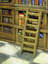 Library-ladder